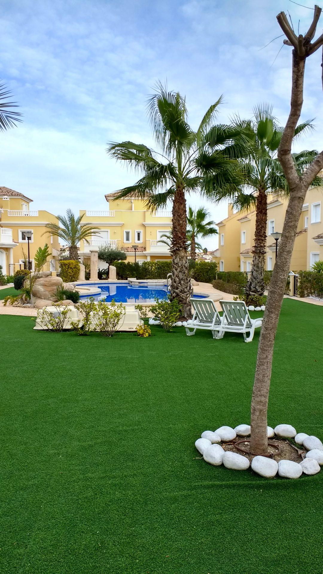Villasol palmboom aan zwembad